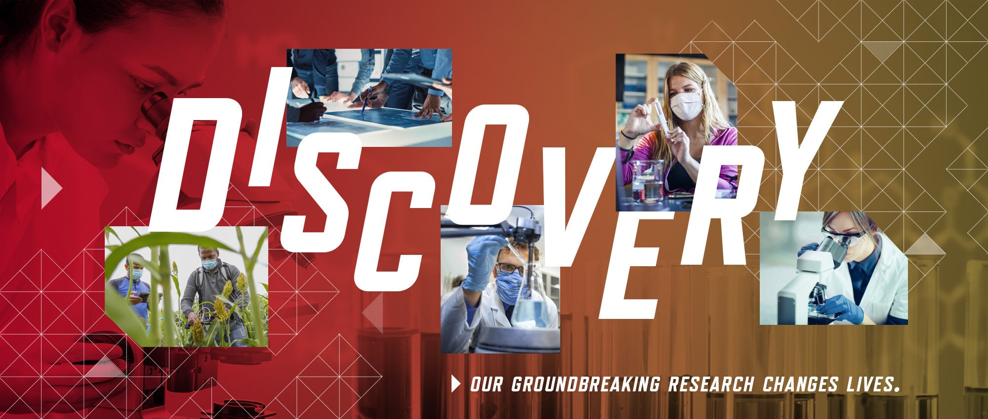 discovery: our groundbreaking research changes lives